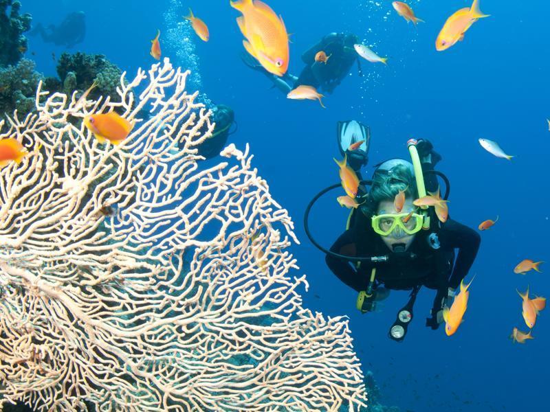 OSN_zvazuje_svetovu_dohodu_o_obmedzeni_rybolovu_na_mori_1