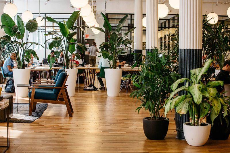 Pracovný priestor v centrále firmy WeWork v New Yorku.