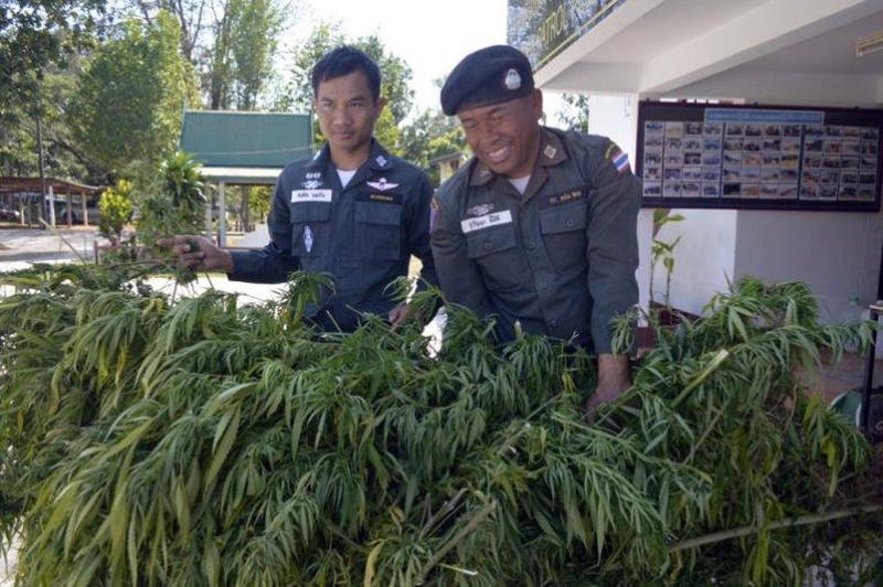 Thajsko_na_rok_2019_schvaluje_lekarsku_marihuanu