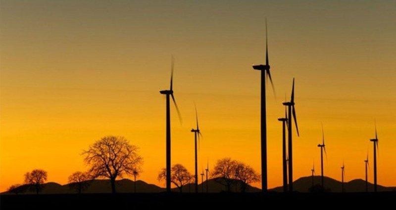 Australsky_miliardar_zvazuje_investicie_do_boomu_obnovitelnych_zdrojov