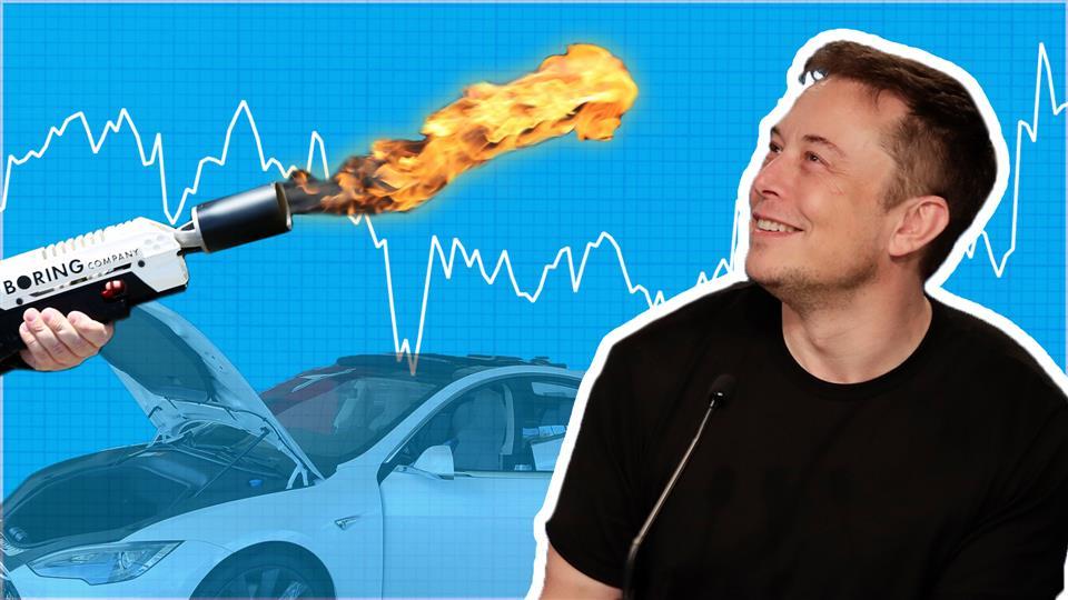 CEO automobilky Tesla.