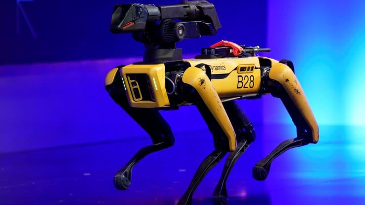 Robot spoločnosti Boston Dynamics, známy ako Spot.