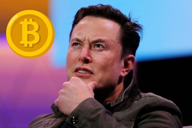 Napodobovatelia-Elona-Muska-v-krypto-podvodoch-ukradli-viac-ako-$2-miliony
