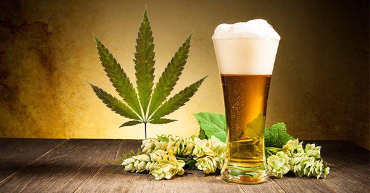 Jedno-z-najvacsich-mien-remeselne-o-piva-smeruje-do-oblasti-marihuany