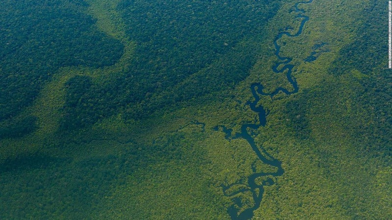 Facebook-zakaze-predaj-chranenych-pozemkov-amazonskeho-dazdoveho-pralesa