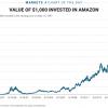 Výnos akcií spoločnosti Amazon od emisie – 49 000%!