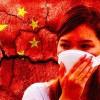 """Koronavírus ničí čínske hospodárstvo a """"nočná mora"""" ešte neskončila"""