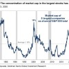 Len 5 spoločností tvorí až 20% index S&P 500