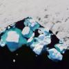 Pandémia vedie boom investícií do riešenia klimatickej krízy