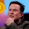 Napodobovatelia Elona Muska v krypto podvodoch okradli investorov o milióny